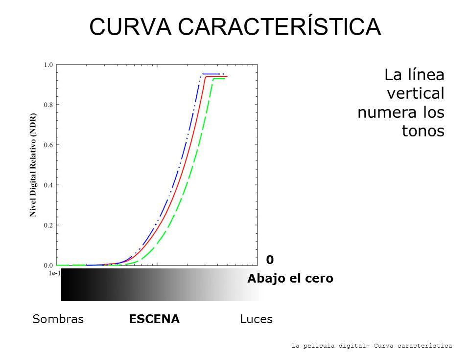 CURVA CARACTERÍSTICA La línea vertical numera los tonos Abajo el cero