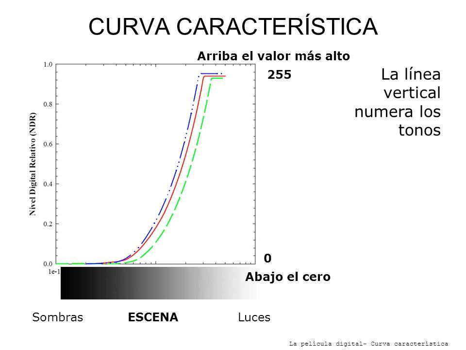 CURVA CARACTERÍSTICA La línea vertical numera los tonos