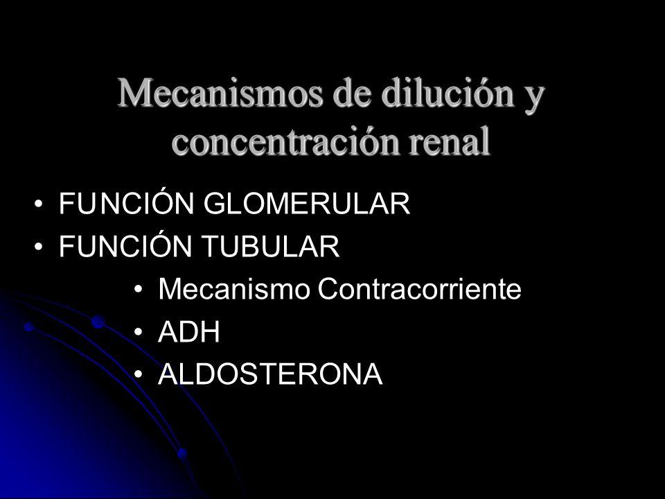 Mecanismos de dilución y concentración renal