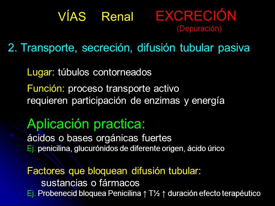 EXCRECIÓN Aplicación practica: VÍAS Renal