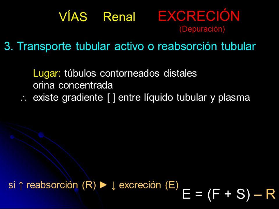 EXCRECIÓN E = (F + S) – R VÍAS Renal