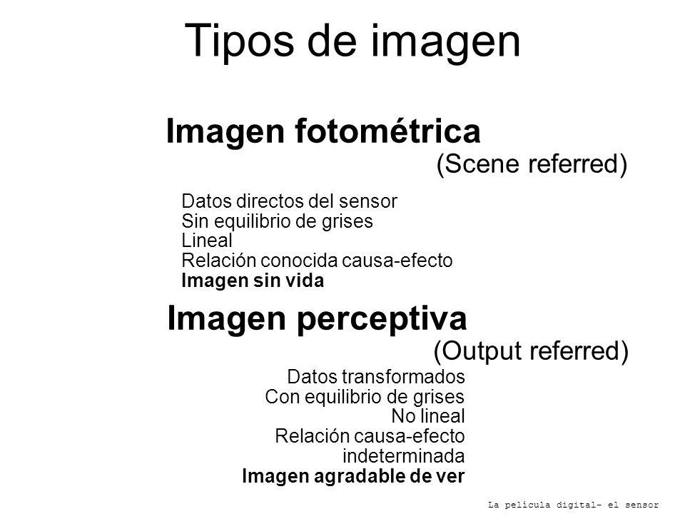 Tipos de imagen Imagen fotométrica Imagen perceptiva (Scene referred)