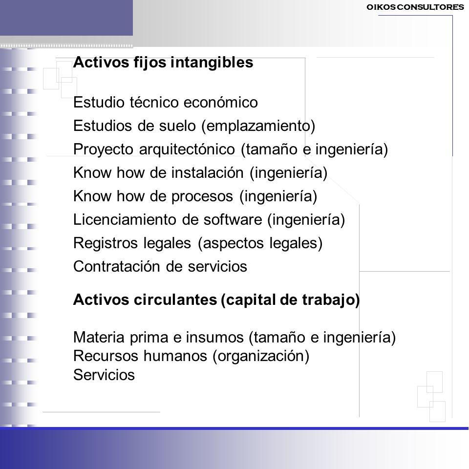 Activos fijos intangibles Estudio técnico económico
