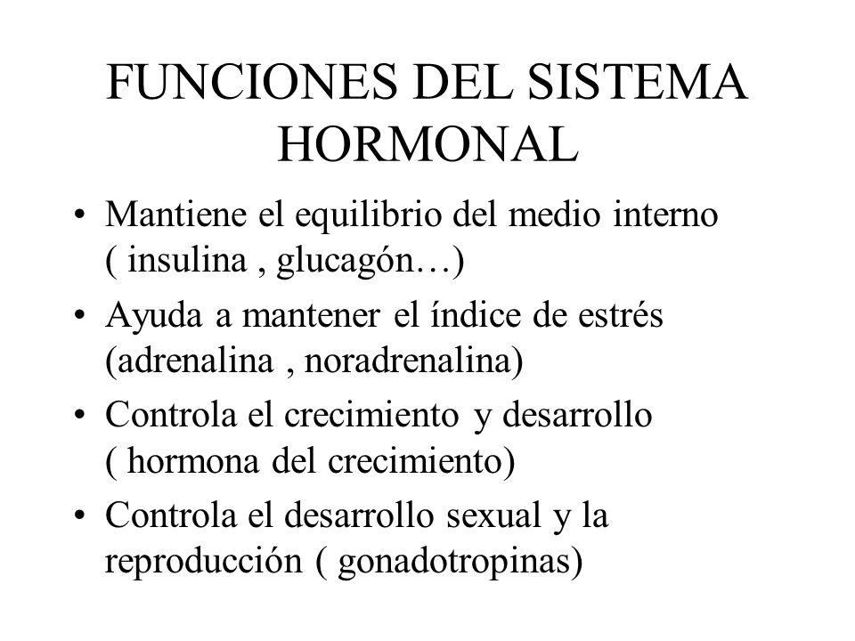 FUNCIONES DEL SISTEMA HORMONAL