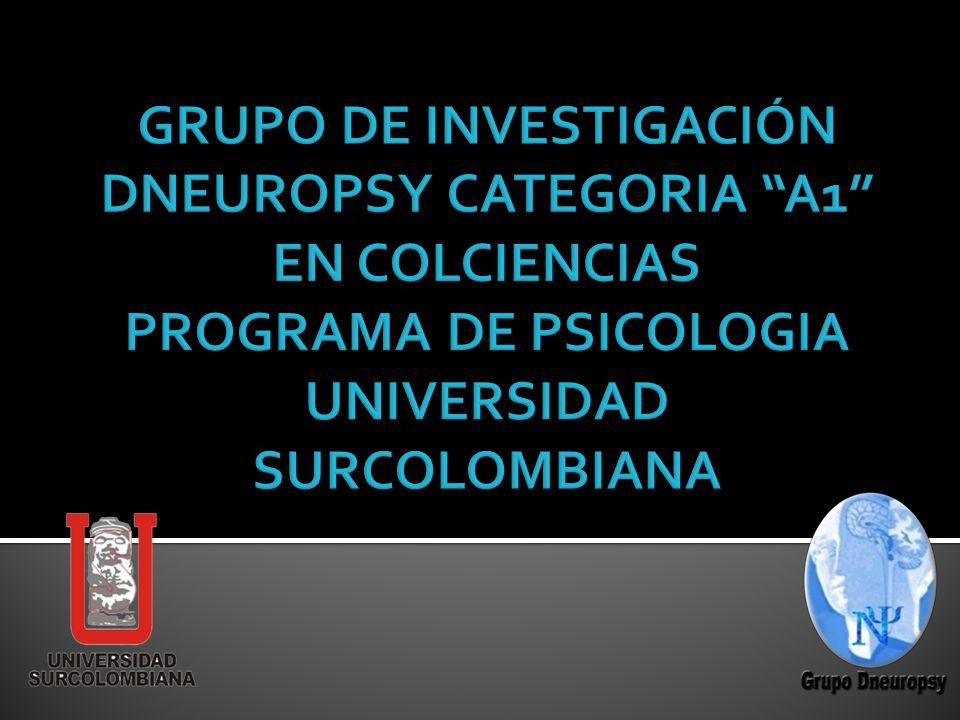 Grupo de investigaci n dneuropsy categoria a1 en - Immobili categoria a1 ...