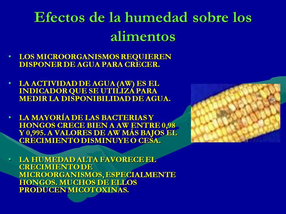Efectos de la humedad sobre los alimentos