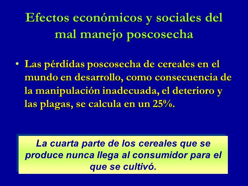 Efectos económicos y sociales del mal manejo poscosecha