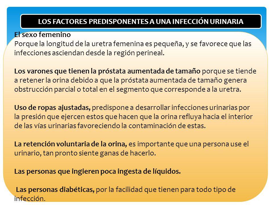 LOS FACTORES PREDISPONENTES A UNA INFECCIÓN URINARIA