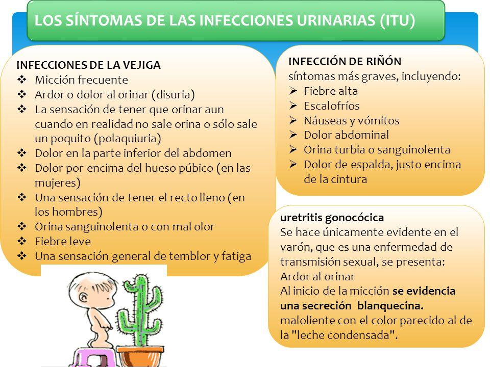 LOS SÍNTOMAS DE LAS INFECCIONES URINARIAS (ITU)