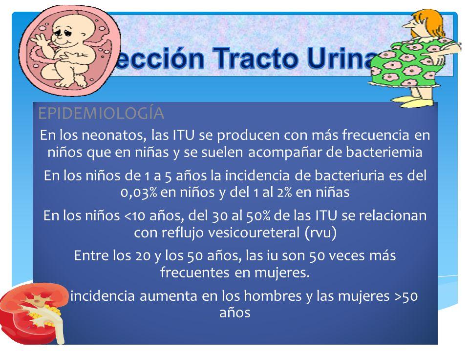 Infección Tracto Urinaria