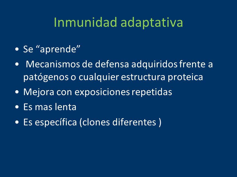Inmunidad adaptativa Se aprende