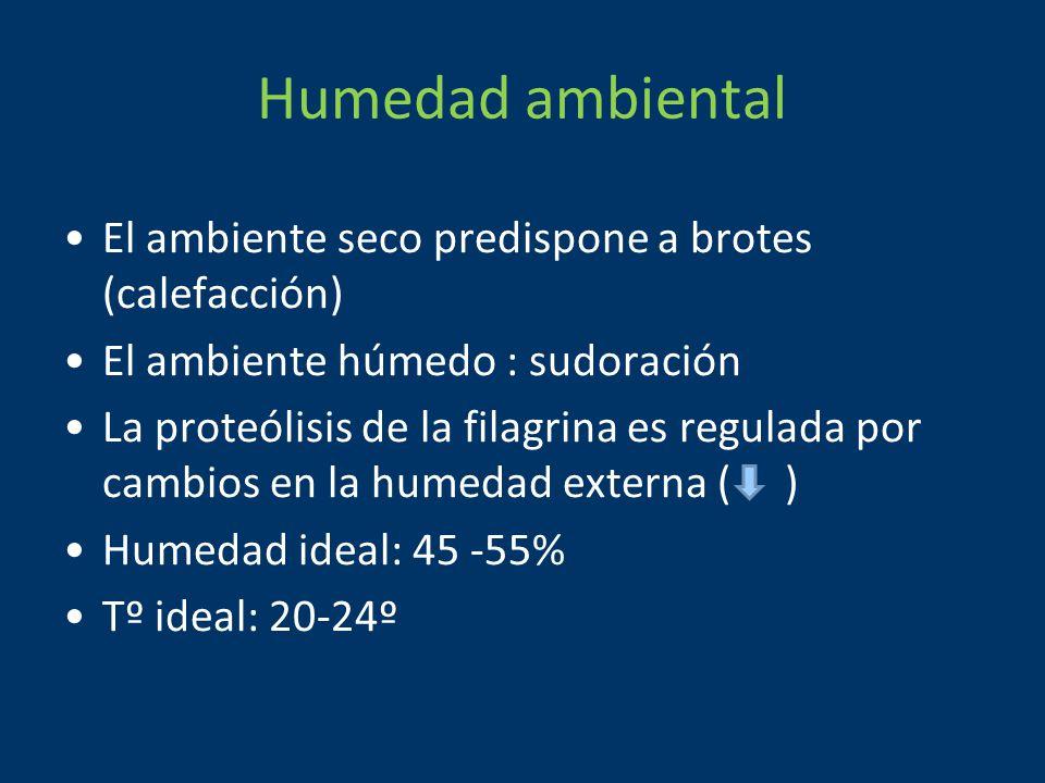 Humedad ambiental El ambiente seco predispone a brotes (calefacción)