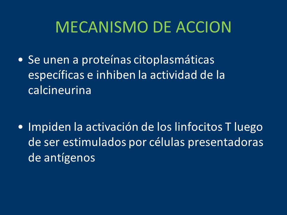 MECANISMO DE ACCION Se unen a proteínas citoplasmáticas específicas e inhiben la actividad de la calcineurina.