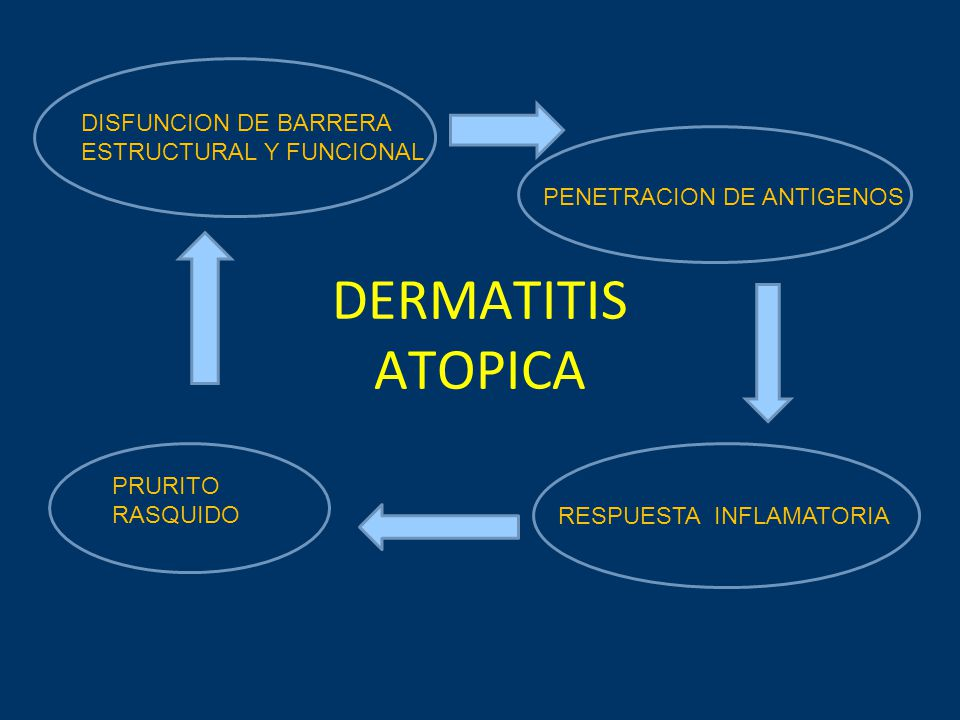 DERMATITIS ATOPICA DISFUNCION DE BARRERA ESTRUCTURAL Y FUNCIONAL