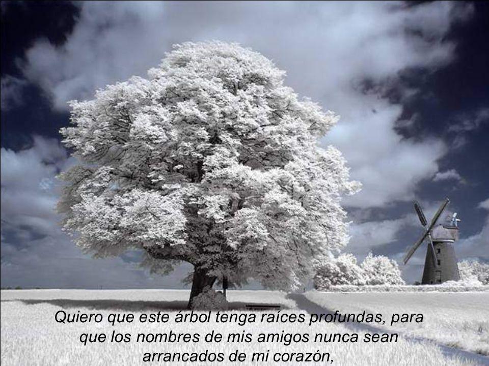 Quiero que este árbol tenga raíces profundas, para que los nombres de mis amigos nunca sean arrancados de mi corazón,