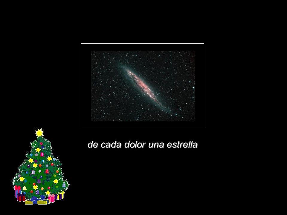 de cada dolor una estrella