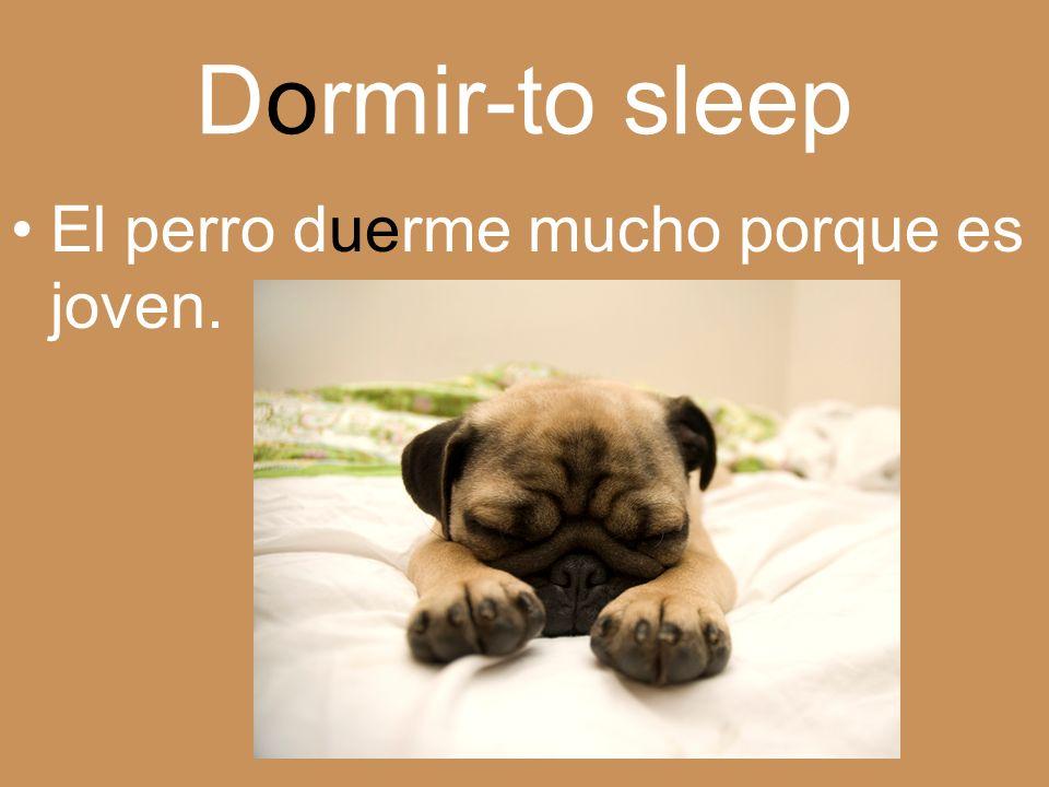 Dormir-to sleep El perro duerme mucho porque es joven.