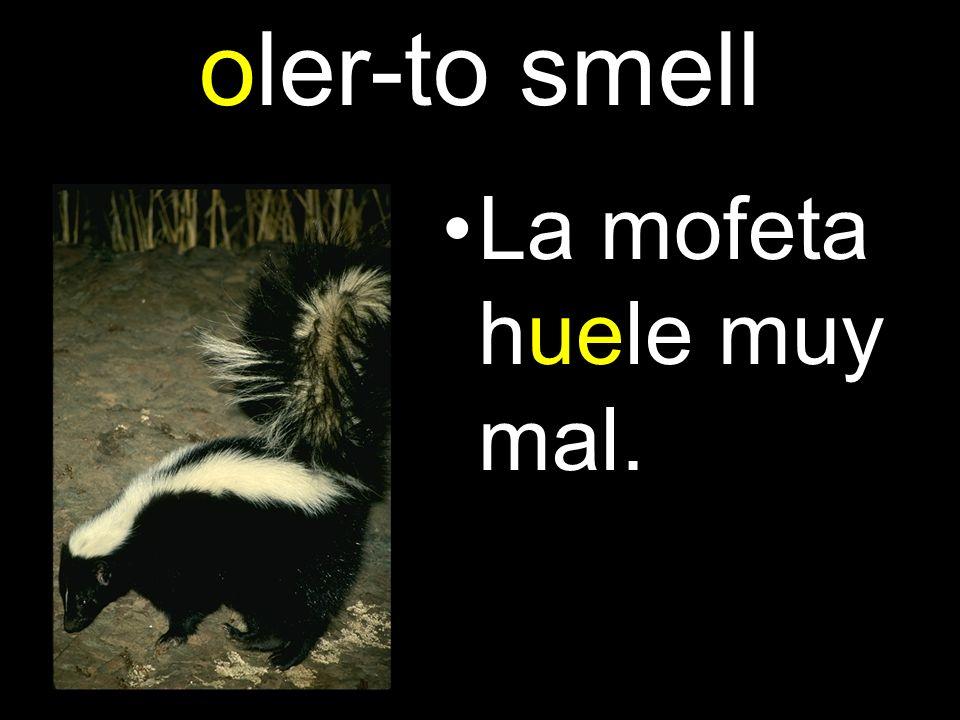 oler-to smell La mofeta huele muy mal.