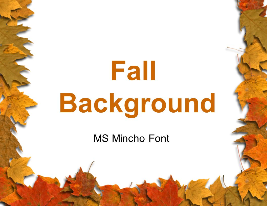 Fall Background MS Mincho Font
