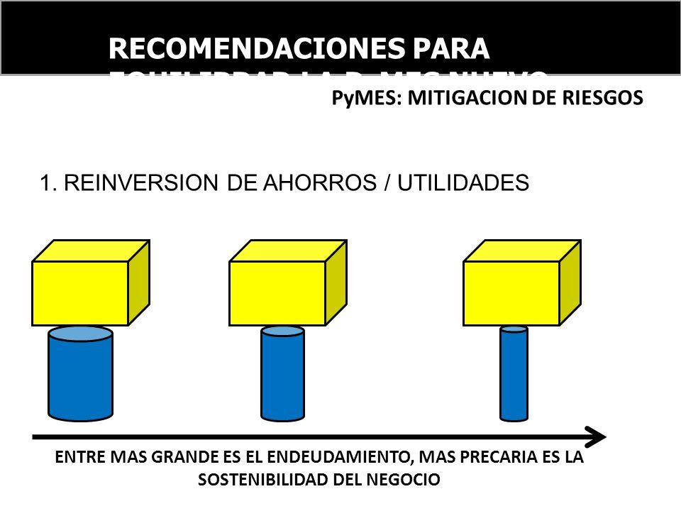 PyMES: MITIGACION DE RIESGOS