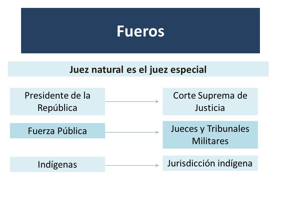 Juez natural es el juez especial