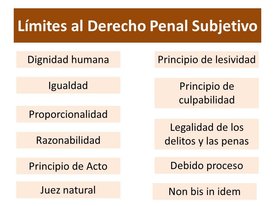 Límites al Derecho Penal Subjetivo