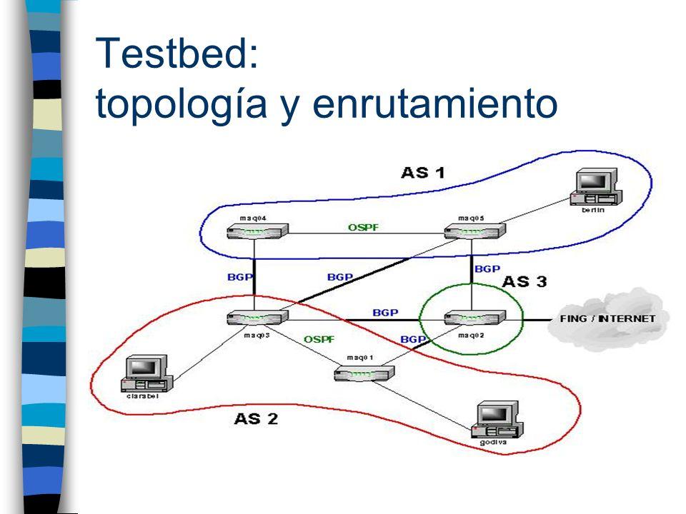 Testbed: topología y enrutamiento