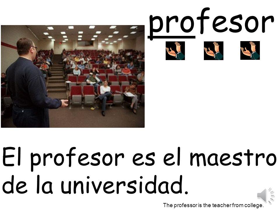 profesor El profesor es el maestro de la universidad.