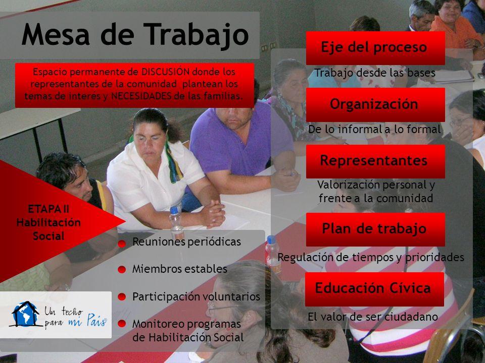 Mesa de Trabajo Eje del proceso Organización Representantes