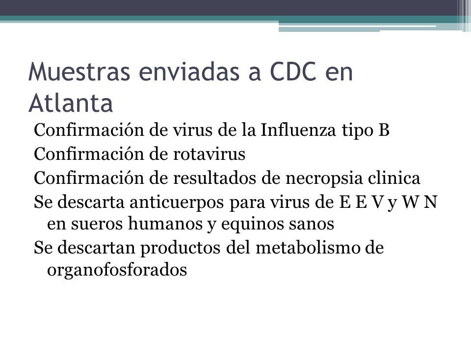 Muestras enviadas a CDC en Atlanta