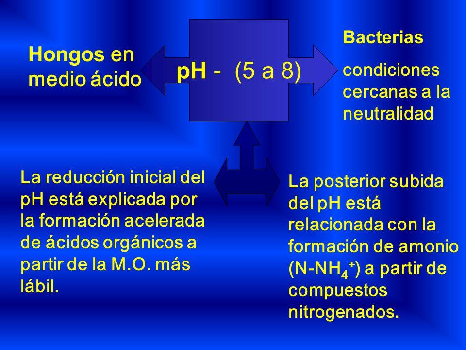 pH - (5 a 8) Hongos en medio ácido Bacterias