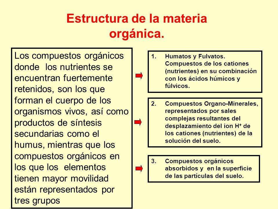 Estructura de la materia orgánica.