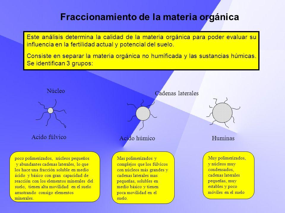 Fraccionamiento de la materia orgánica