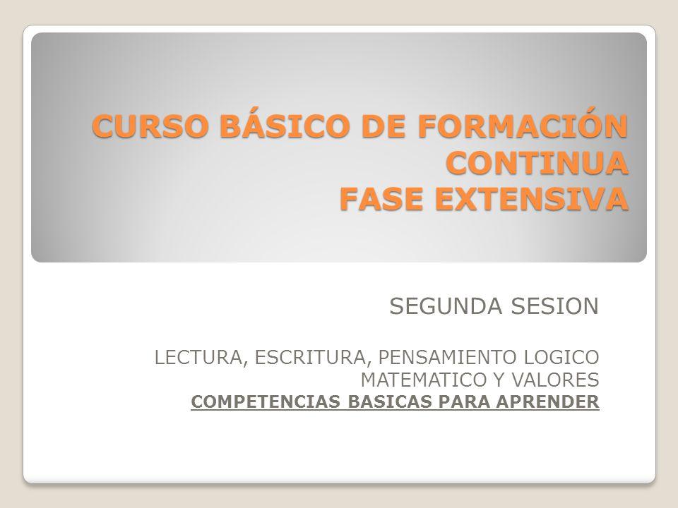 CURSO BÁSICO DE FORMACIÓN CONTINUA FASE EXTENSIVA