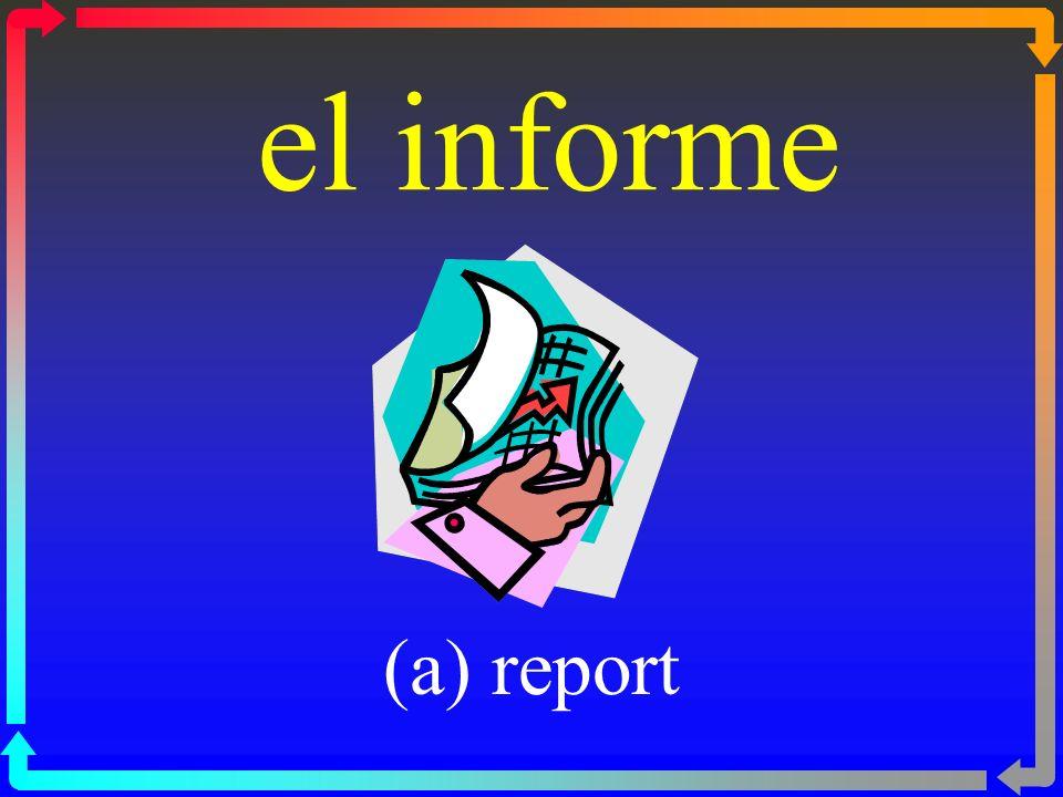 el informe (a) report