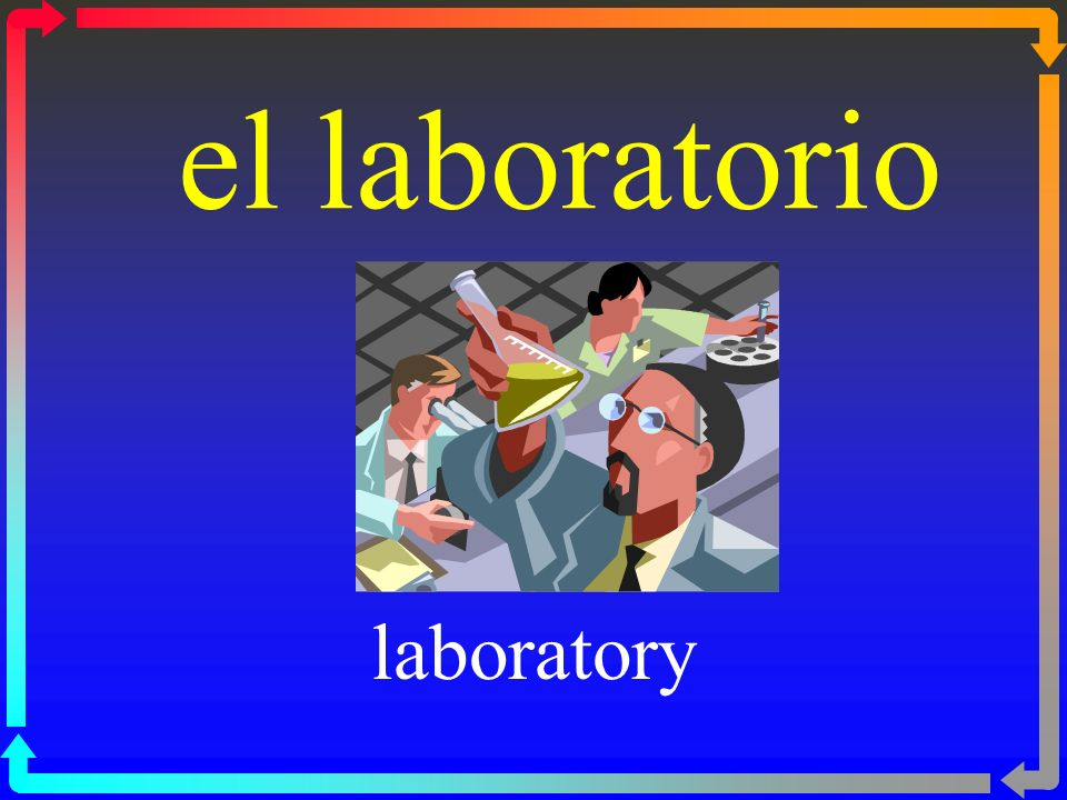 el laboratorio laboratory