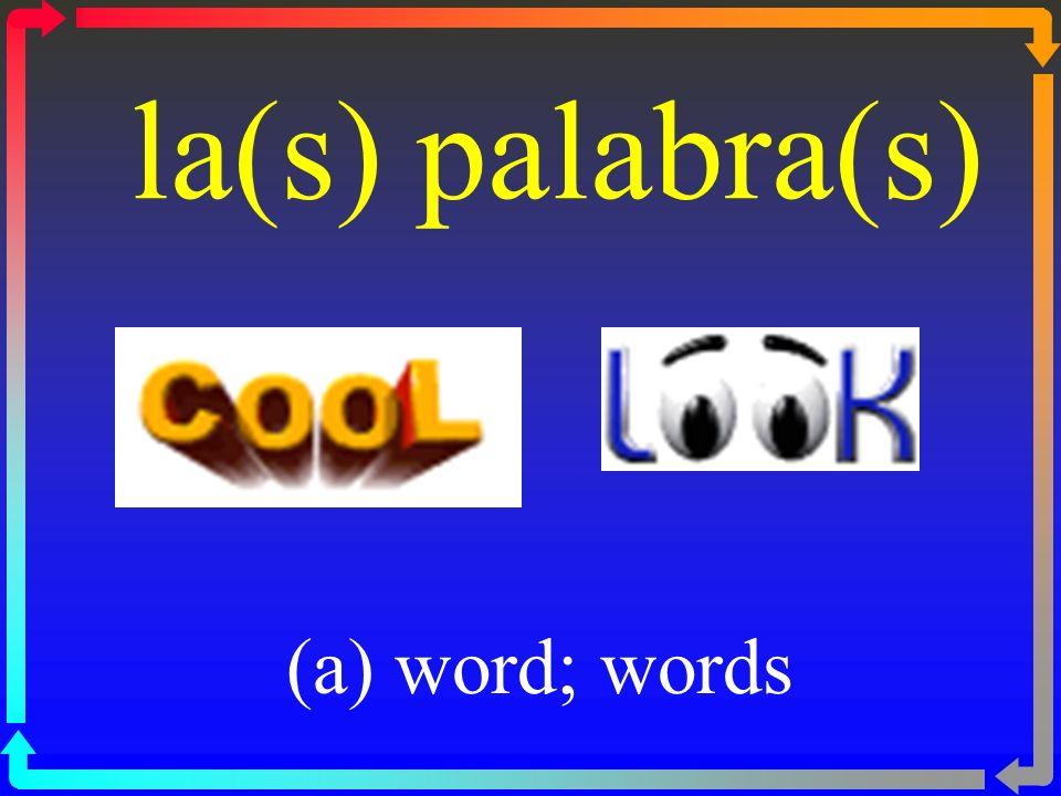 la(s) palabra(s) (a) word; words