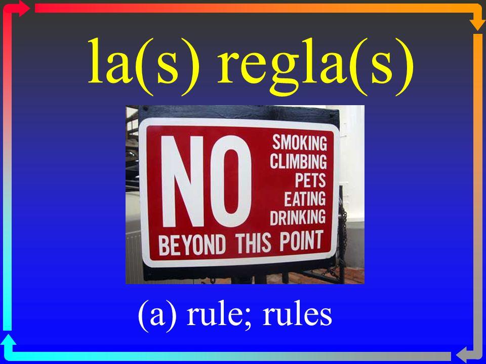 la(s) regla(s) (a) rule; rules