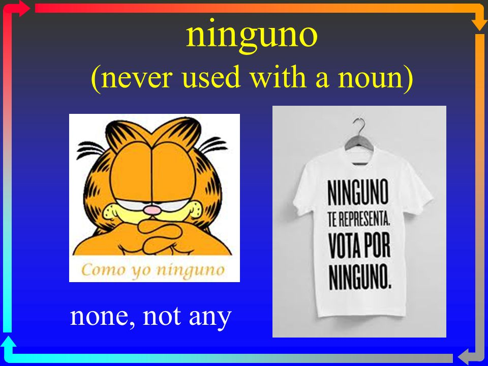ninguno (never used with a noun)