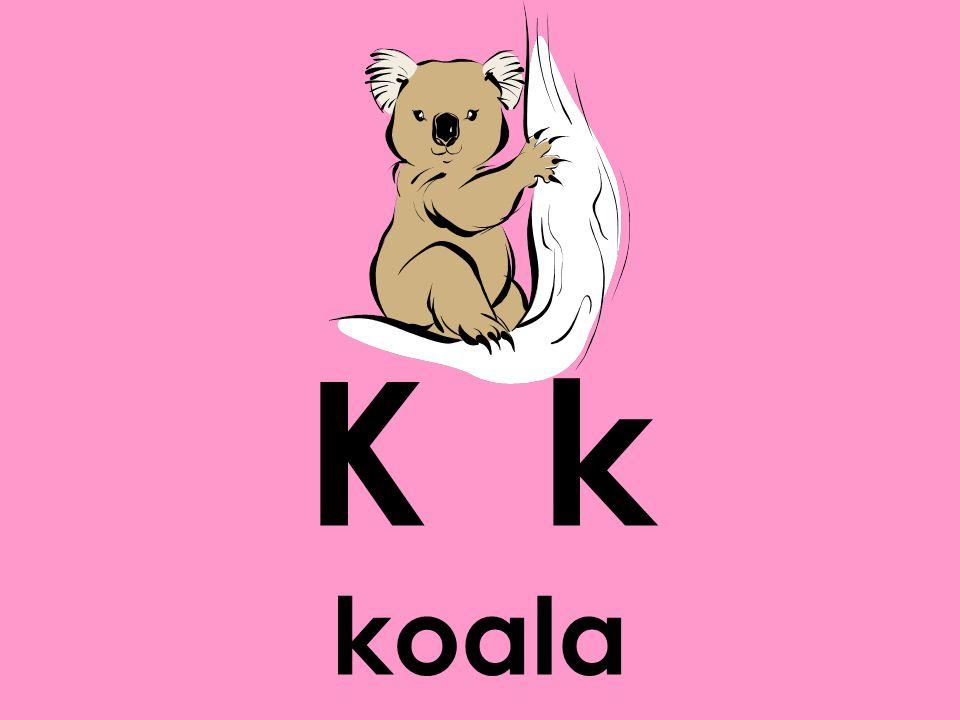 K k koala