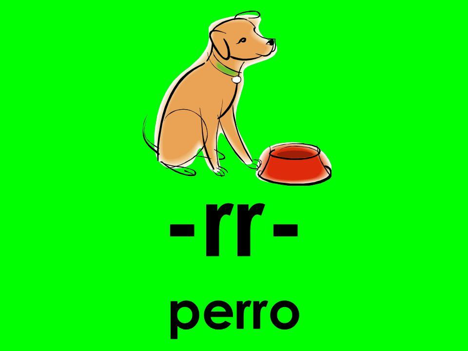 -rr- perro