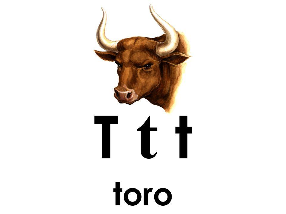 T t t toro