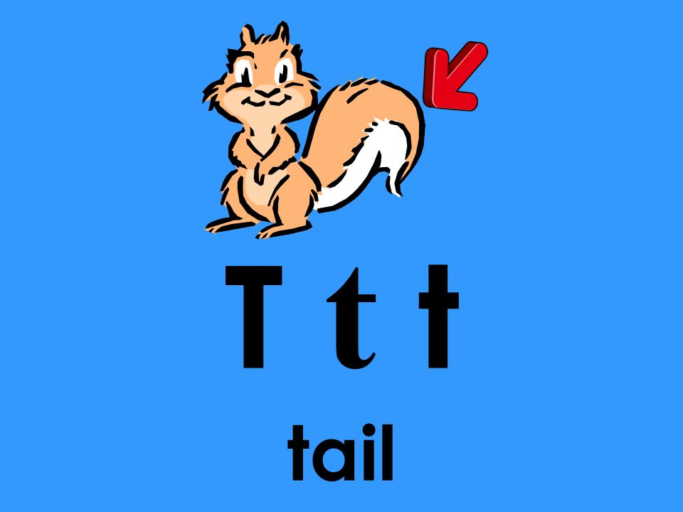 T t t tail