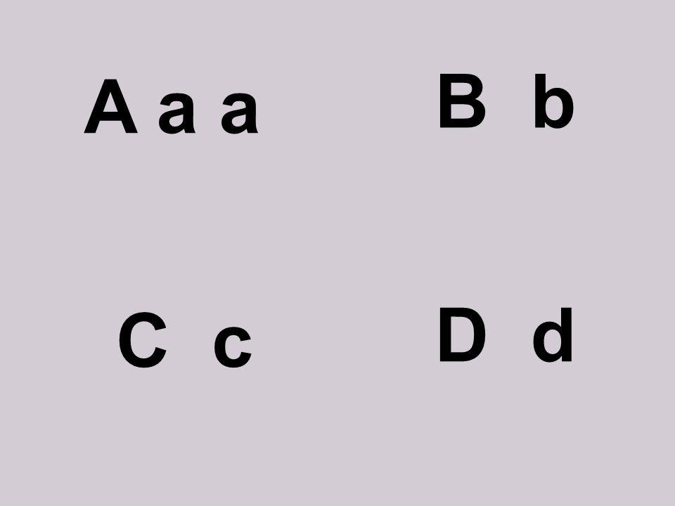 B b A a a D d C c