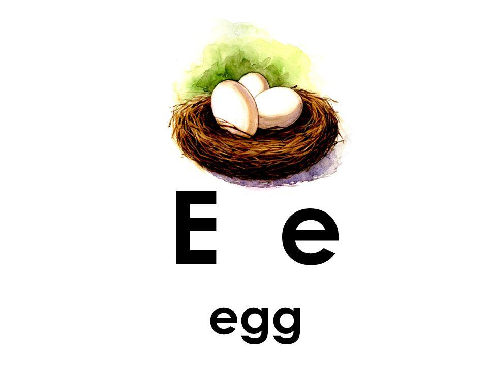 E e egg