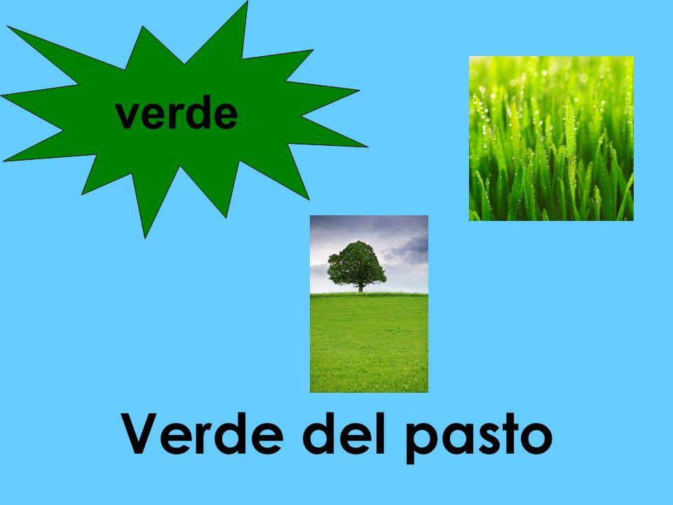 verde Verde del pasto