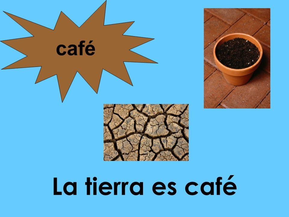 café La tierra es café