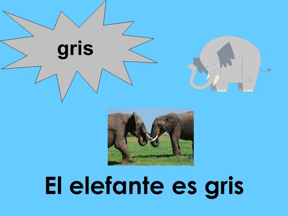 gris El elefante es gris