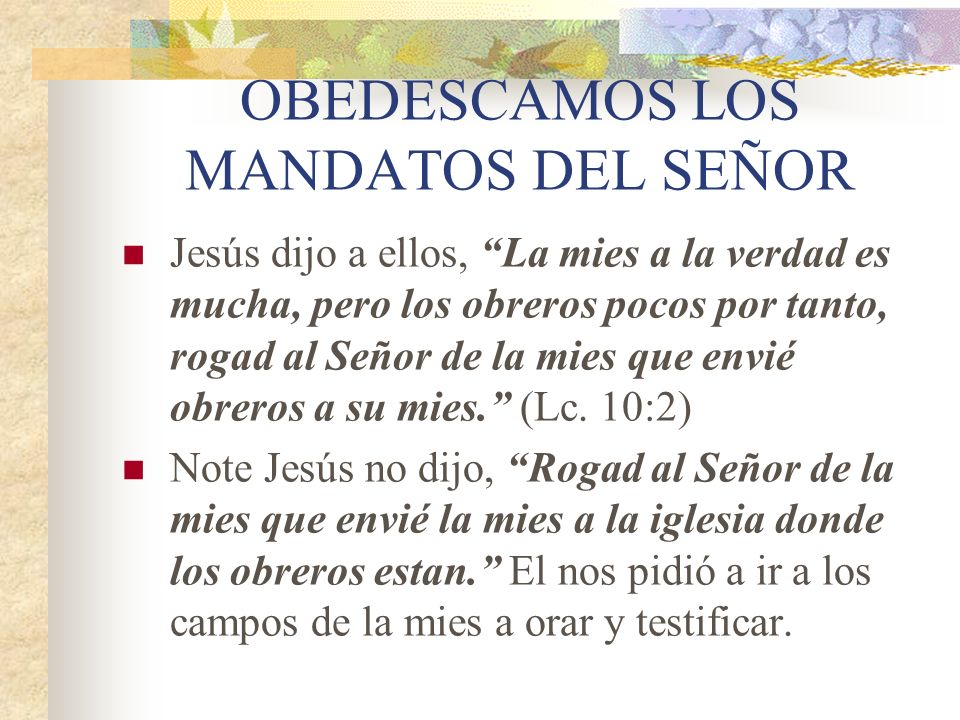 OBEDESCAMOS LOS MANDATOS DEL SEÑOR