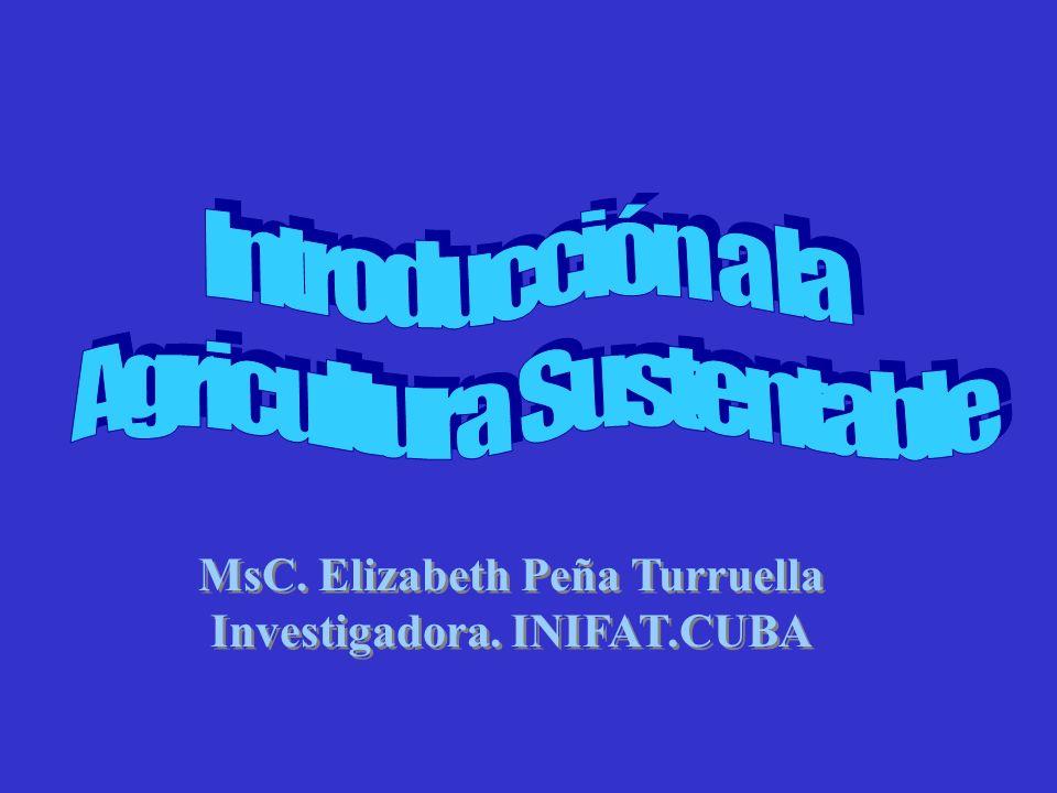 MsC. Elizabeth Peña Turruella Investigadora. INIFAT.CUBA